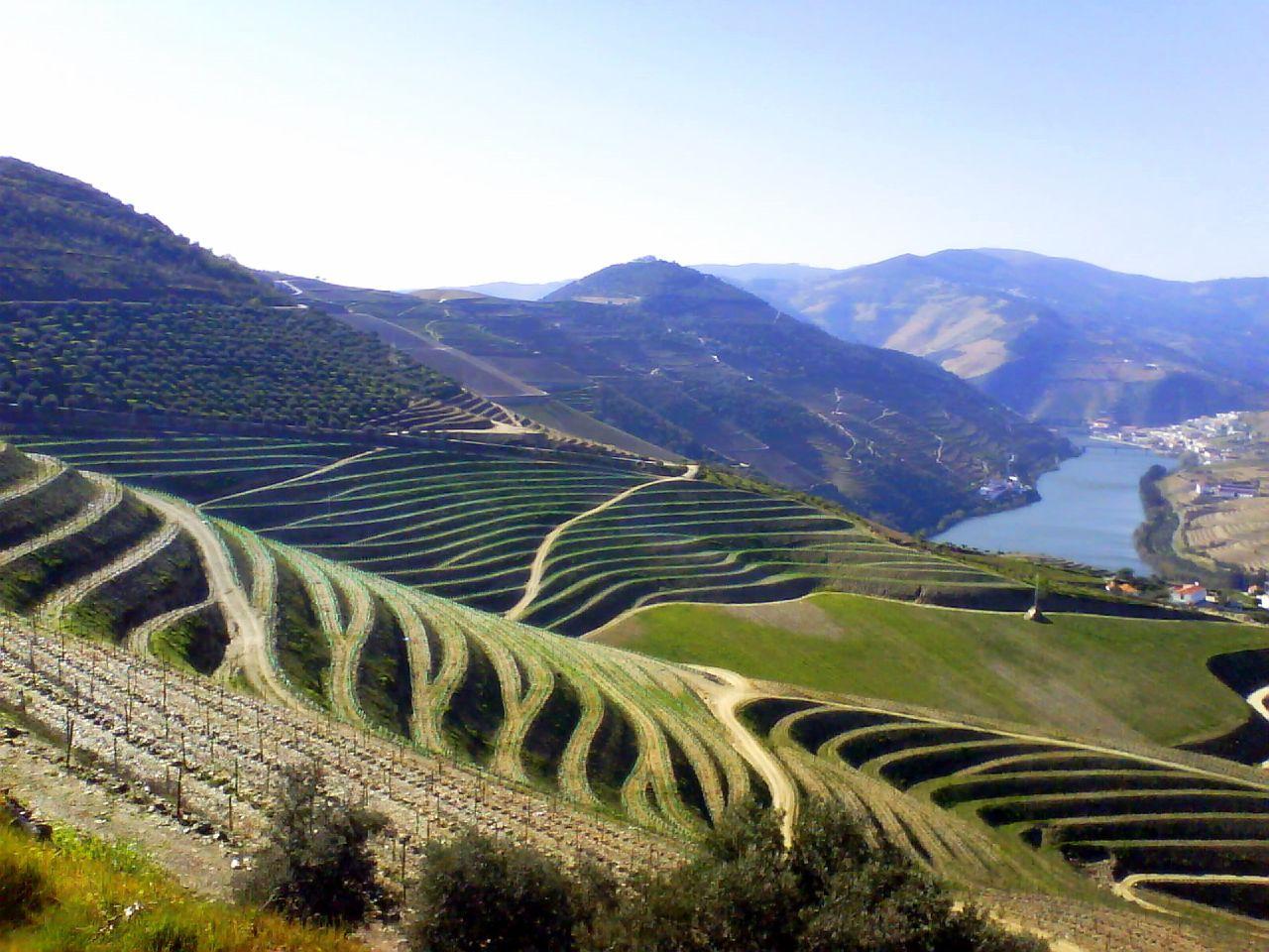 Plus de 150 groupes de la société civile appellent à une réforme des politiques agricoles européennes