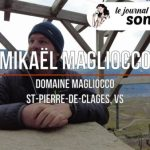 Dans le vignoble de Chamoson avec Mikael Magliocco