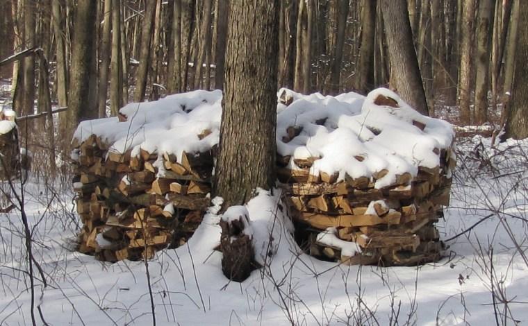 wood jim