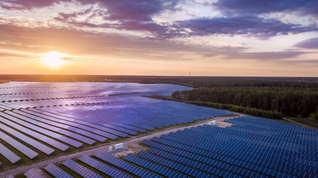 Solarpark-Wahnsinn (Bild: shutterstock.com/Von ver0nicka)