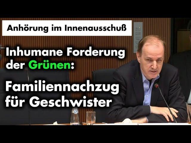 Grüne wollen neue Anreize zur illegalen Migration | Dr. Gottfried Curio; Bild: Startbild Youtube