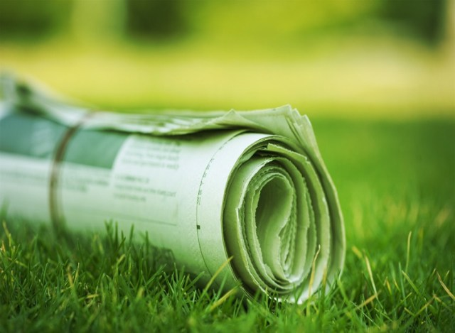 Links-grüner Medienhaufen (Symbolbild: shuterstock.com/Von Billion Photos)