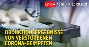 Live: Pathologen enthüllen Obduktionsergebnisse von verstorbenen Corona-Geimpften; Bild: Startbild Youtubevideo NTD Deutsch