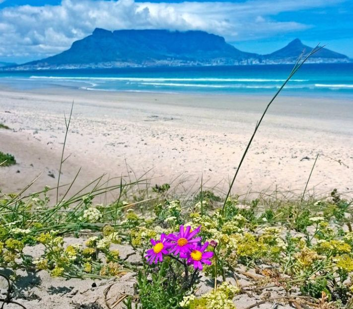 table-mountain-view-beach