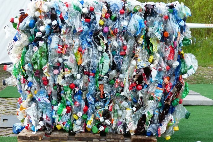 Plastics Human Health And Environmental Impacts The Road