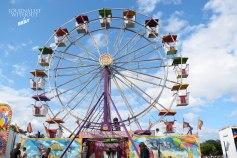 Riot Fest Ferris Wheel