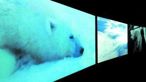 7e ciel: on craque pour «Vertigo Sea», «Soeurs: rêve et variations», «Body and Soul»…