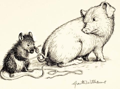 One of Garth Williams original illustrations for Charlott's Web.