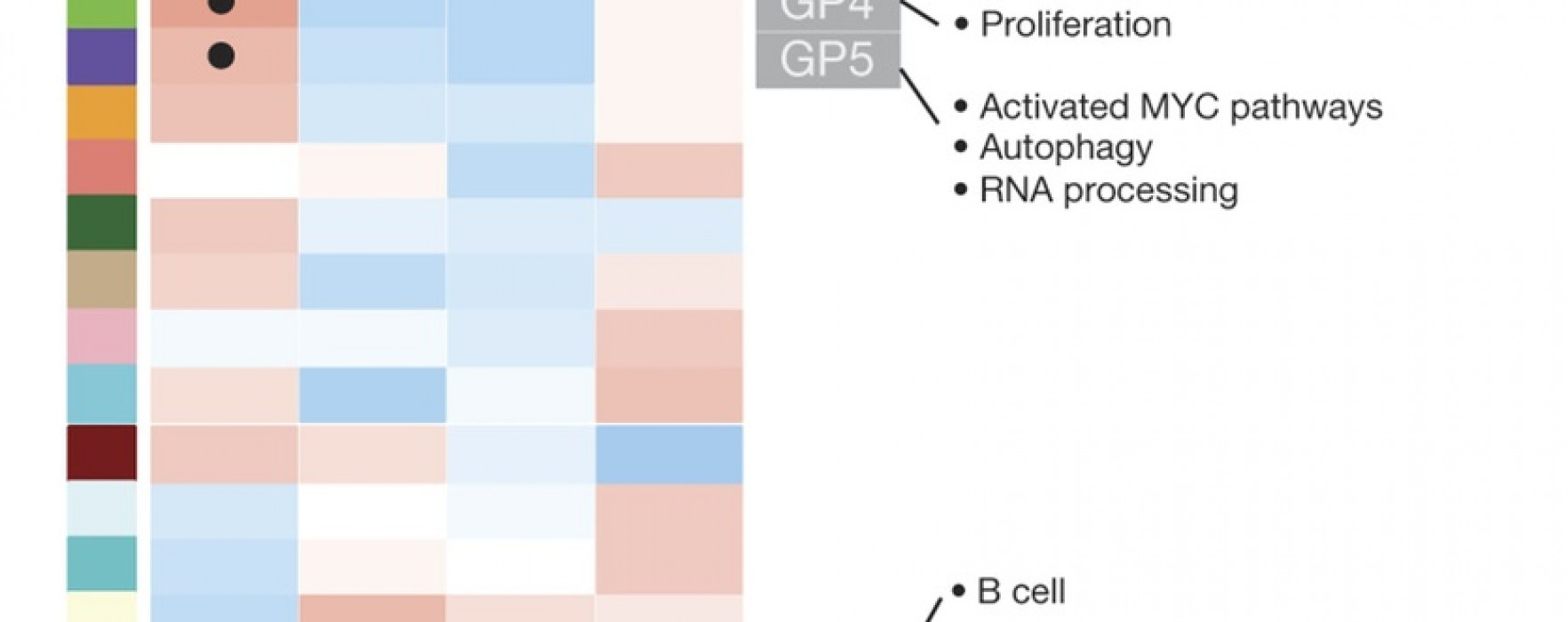 Molecular Subtypes of Pancreatic Cancer Identified
