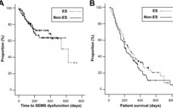 Kaplan–Meier graphs of time to SEMS dysfunction (A) and patient survival (B)