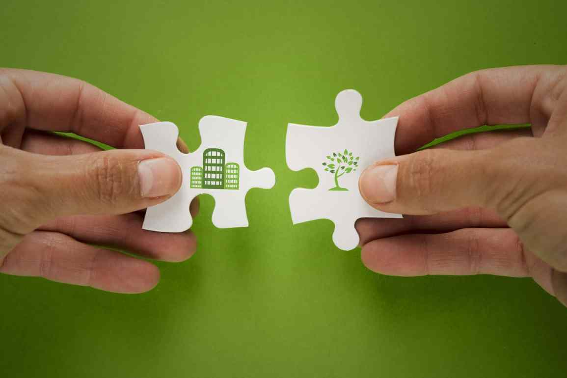 Tips to make your company eco friendly