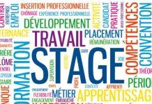 Recrutement de stagiaires par une agence de communication