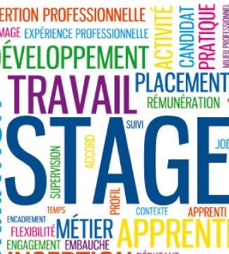 Stage marketing et communication à Sen'Drive Solutions