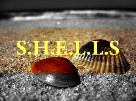 Keep your writing simple. Remember SHELLS.