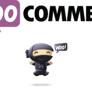 Integrate WooCommerce with Genesis Themes