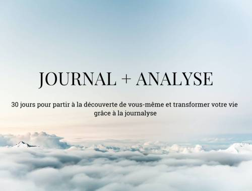 Journal + Analyse