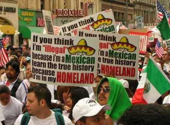 Social Dominance Theory: The U.S. Minority Experience (5/6)