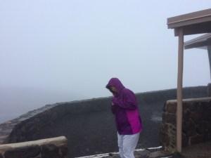 IMG_4458-300x225 Haleakala National Park: Alien Landscape