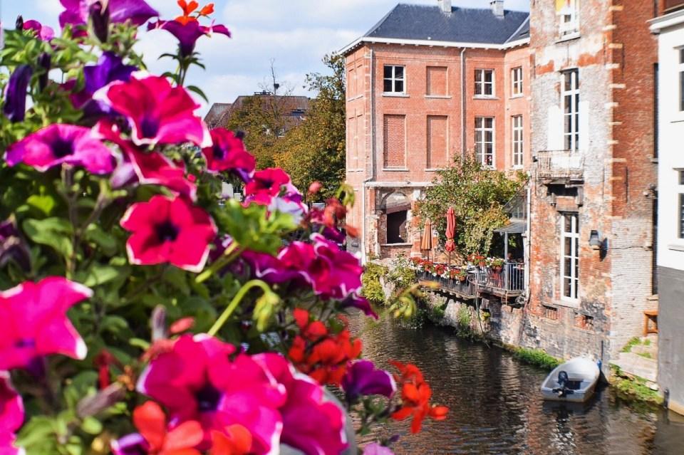 De Gouden Vis, Mechelen