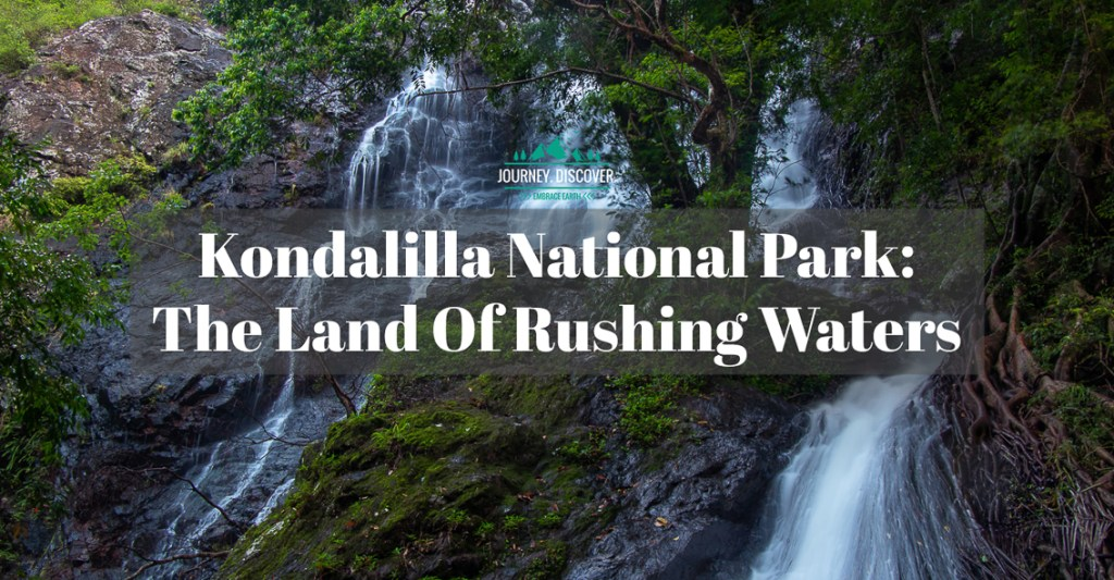 Kondalilla National Park: The Land Of Rushing Waters