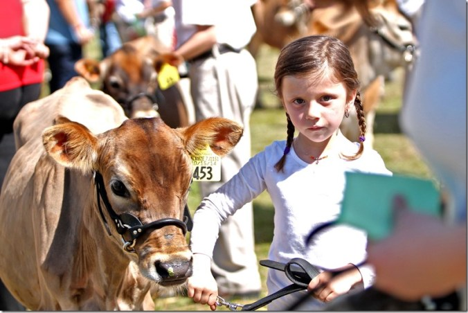 Dairy show 9