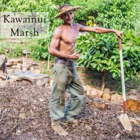 KawainuiMarshButton
