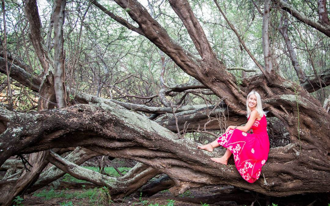 Little Red Riding Hood… Maui Style
