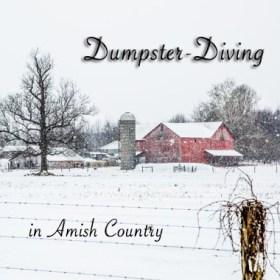 DumpsterDivingButton