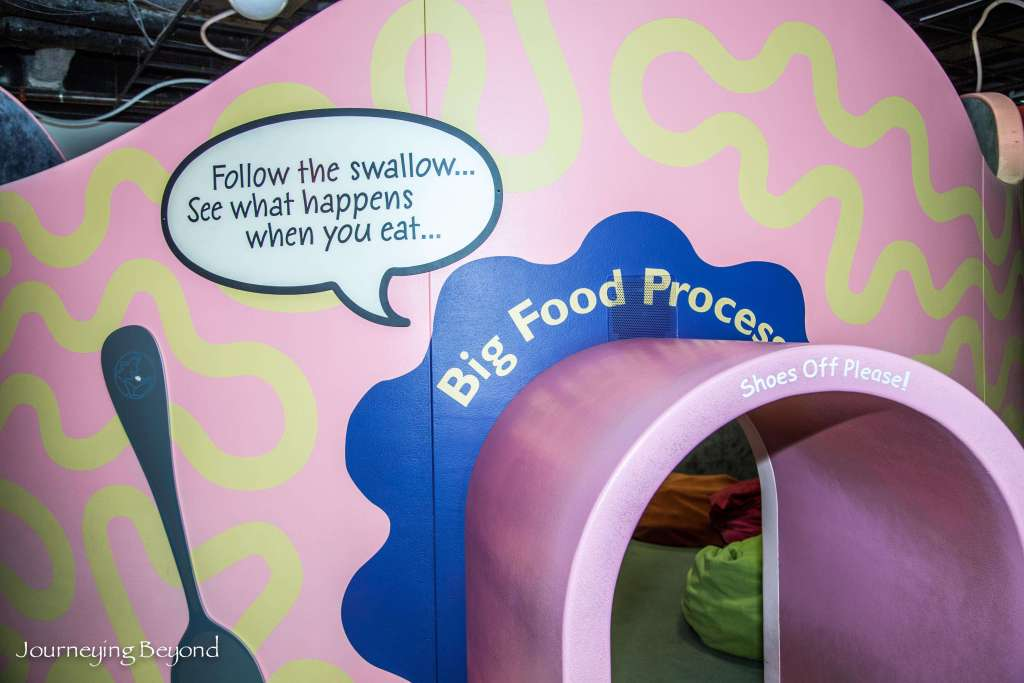 Children's Discovery Center-10