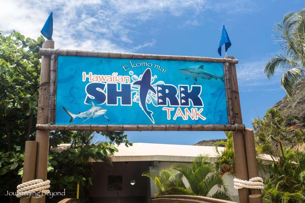 Sea Life Park-2