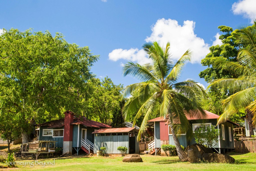 Hawaiian Plantation Village-1
