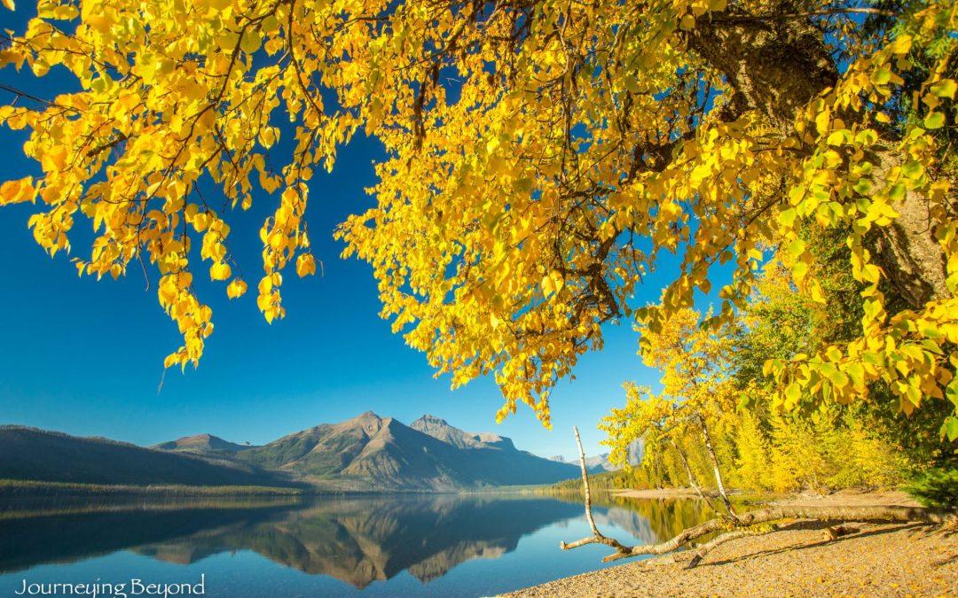 Glacial Healing in Montana