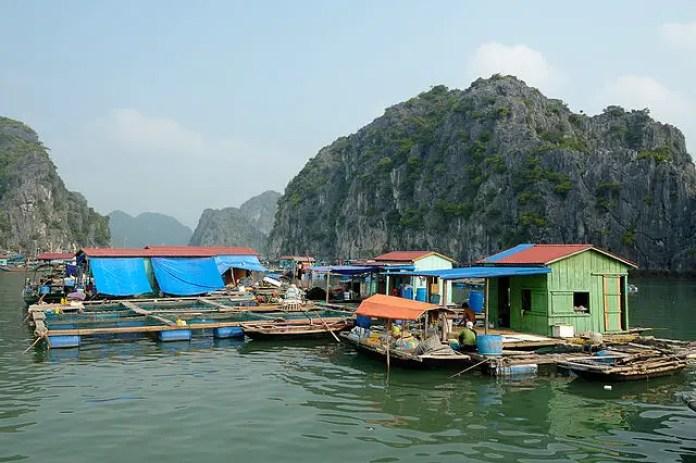 Halong Bay Floating Fishing Village at Ha Long Bay Vietnam