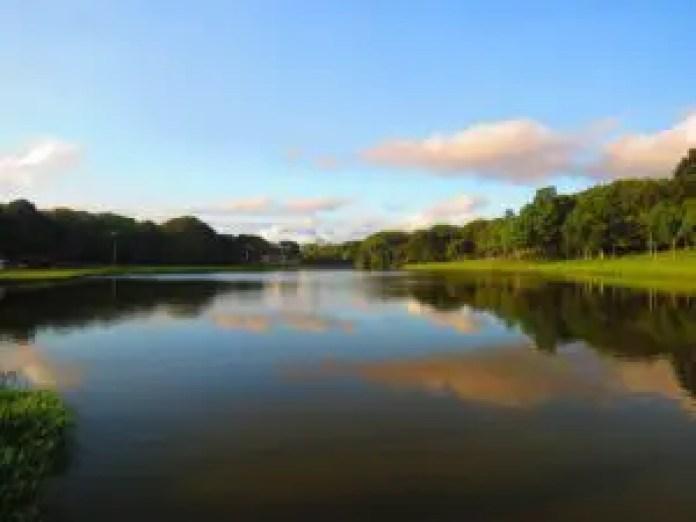 Barigui Park in Curitiba