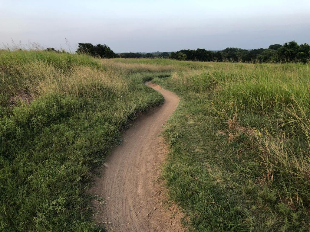 dirt path in the midst of a green meadow