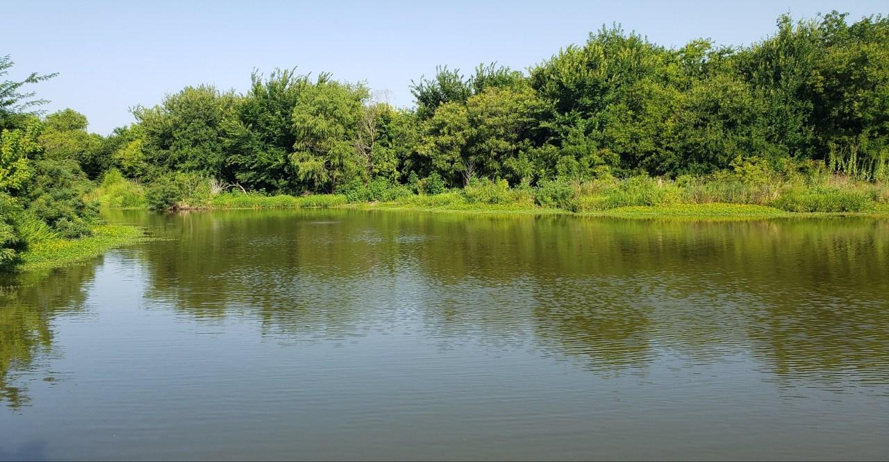 Stocked pond at Cottonwood Creek Greenbelt