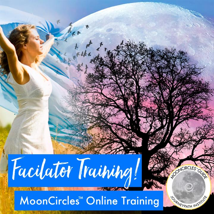Facilitator Training Bundle