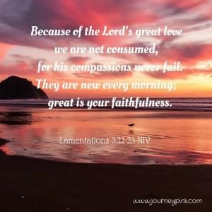 Great is his faithfulness; his mercies begin afresh each morning.