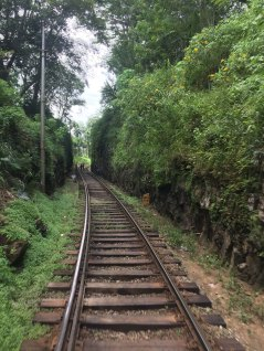 Its one single track for up and down trains