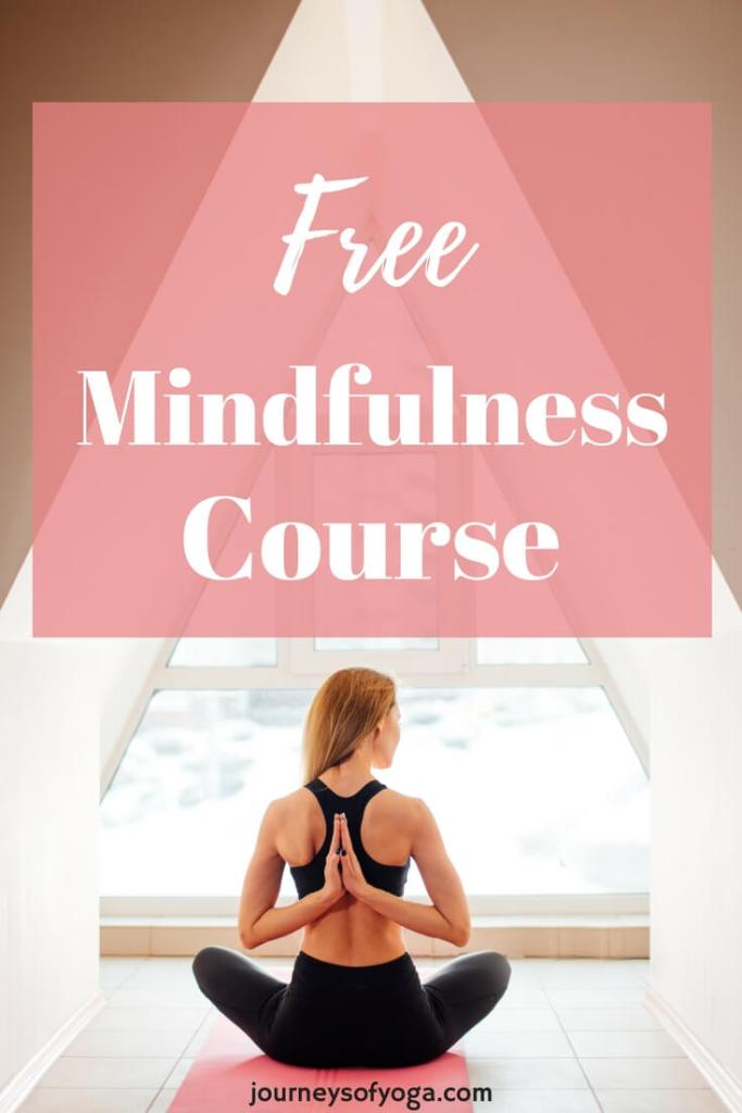 """Palouse Mindfulness is aMindfulness-Based Stress Reduction course. Itis """"a blend of meditation, body awareness, and yoga. The first reason I recommend..."""