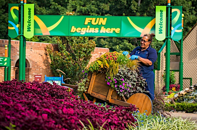 Busch Gardens Williamsburg celebrates 40 years