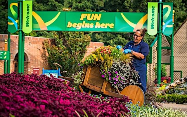 Busch Gardens Williamsburg celebrates 40 years