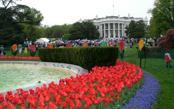 White House Easter Egg Roll: How to secure your tickets