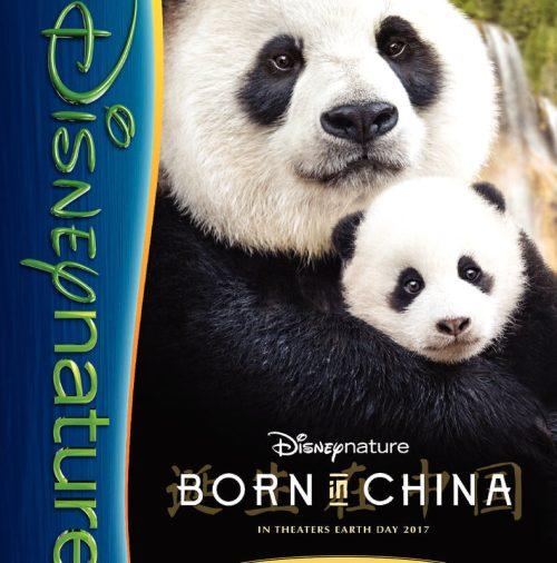 thumbnail of BornInChina_activity