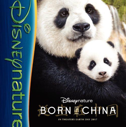 thumbnail of BornInChina_guide