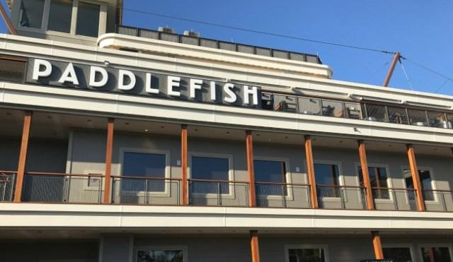 paddlefish disney springs review