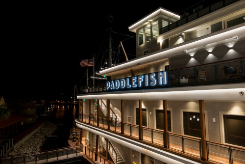Paddlefish at Disney Springs: A Five Star Dining Experience