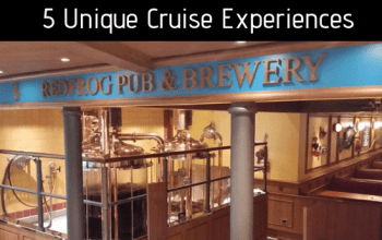 Unique Cruise Experiences For Every Traveler