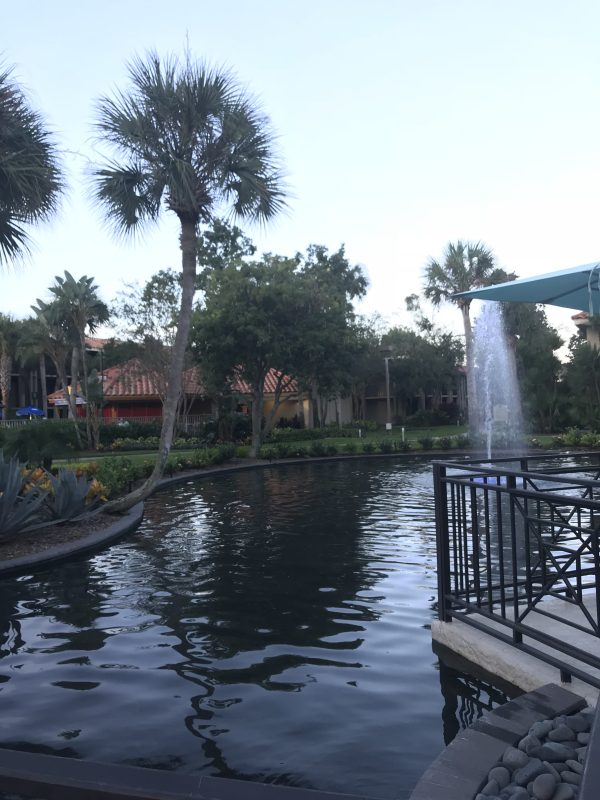 doubletree at seaworld