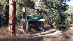 Anna Wolfrom's homesteader cabin
